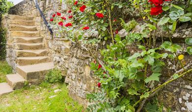 Audience Development Plan for St. Leonards Gardens in East Sussex