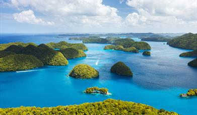 Air Visitor Surveys for Tuvalu, Micronesia and Marshall Islands