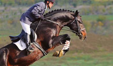 Horse Racing and Equestrian Tourism in Scotland
