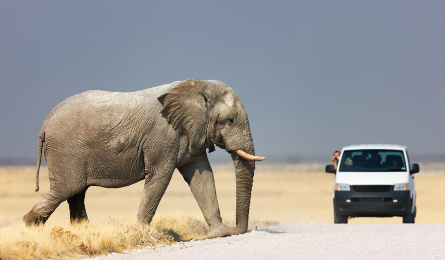 Tourism Indicator Target Setting Services for Namibia
