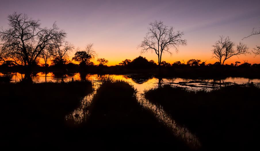 System of Tourism Statistics and Database for Botswana