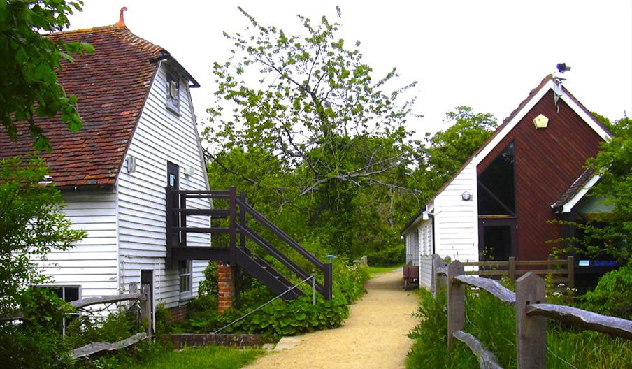 Henfield Sussex Wildlife Woods Mill