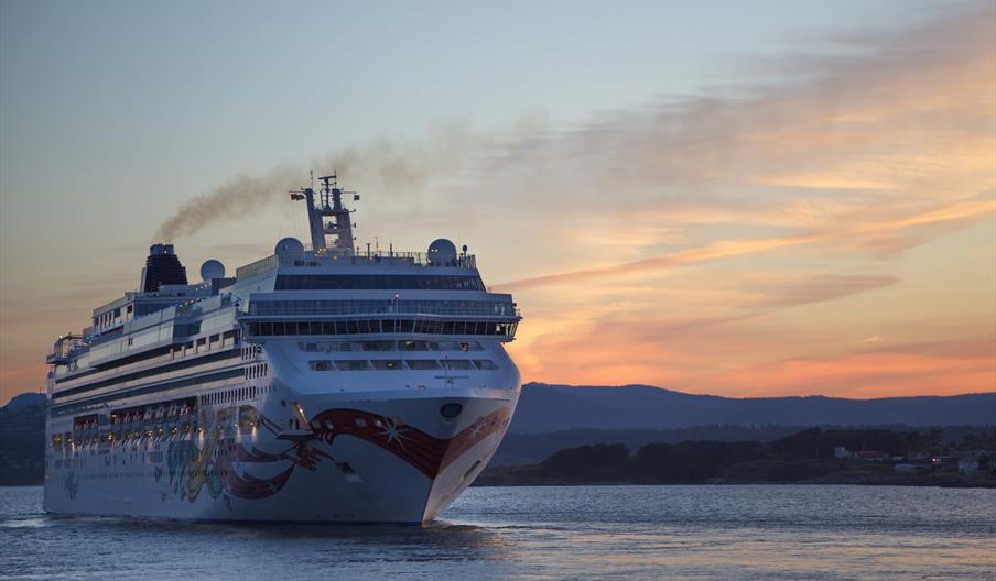 Role of Cruise Tourism in the Falklands Economy