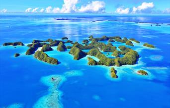 Visitor Survey for Palau