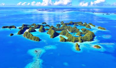 Visitor Survey for Palau