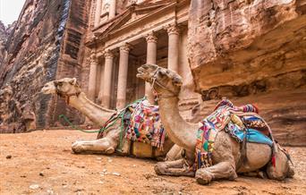 Inbound and Outbound Visitor Survey for Jordan