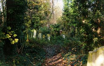 Abney Park Cemetery in Hackney is one of London's Magnificent Seven Cemeteries. It needed a Conservation Management and Business Plan to ensure a sust