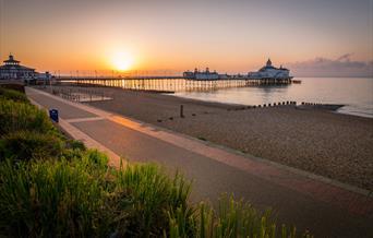 Visit Eastbourne T-Stats