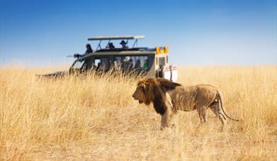Tourism Economic Research for Kenya