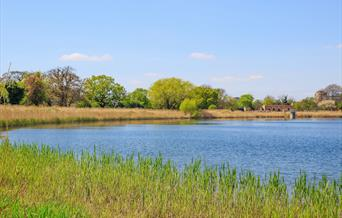 Feasibility Study and Master Plan for Woodberry Wetlands, London