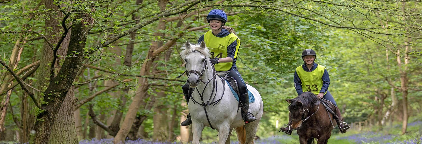 Greensand Country horse riding header image