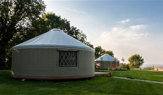 Old Piggery Yurt