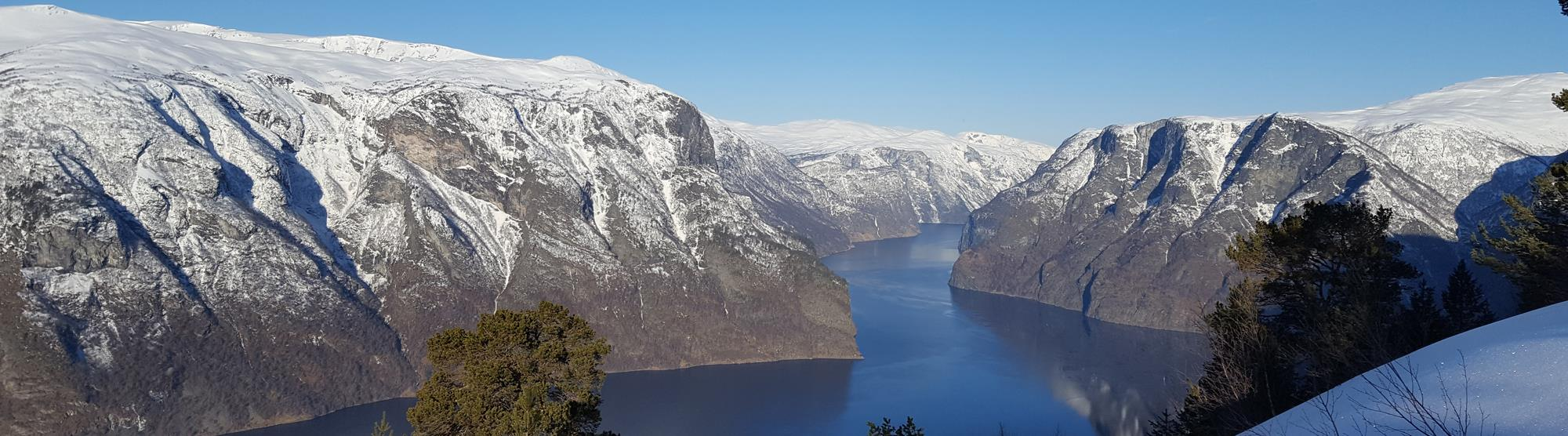 Best time to go on a fjord cruise in Norway
