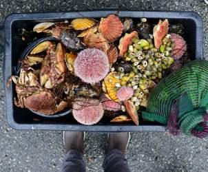 Thumbnail for Bergen City of Gastronomy