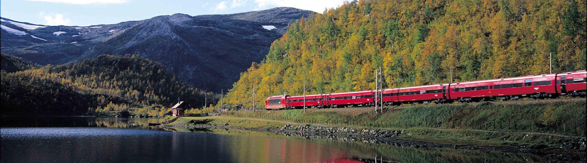 Oslo to Bergen train