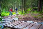 Sykkel og sykkelutleie tilgjengelig på Fløyen