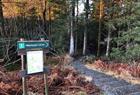 Start of the walk to Håøytoppen