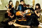 Sonoro strykekvartett