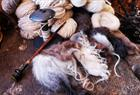 Wool from Gripen Gard