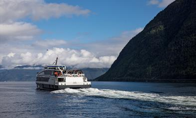Fjord cruise Sognefjord
