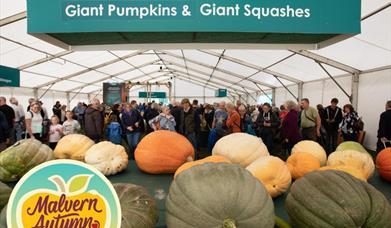 Malvern Autumn Show 24-26 September at Malvern Three Counties Showground
