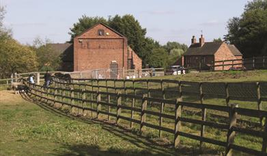 Forge Mill Farm