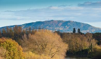 Wrekin Hills