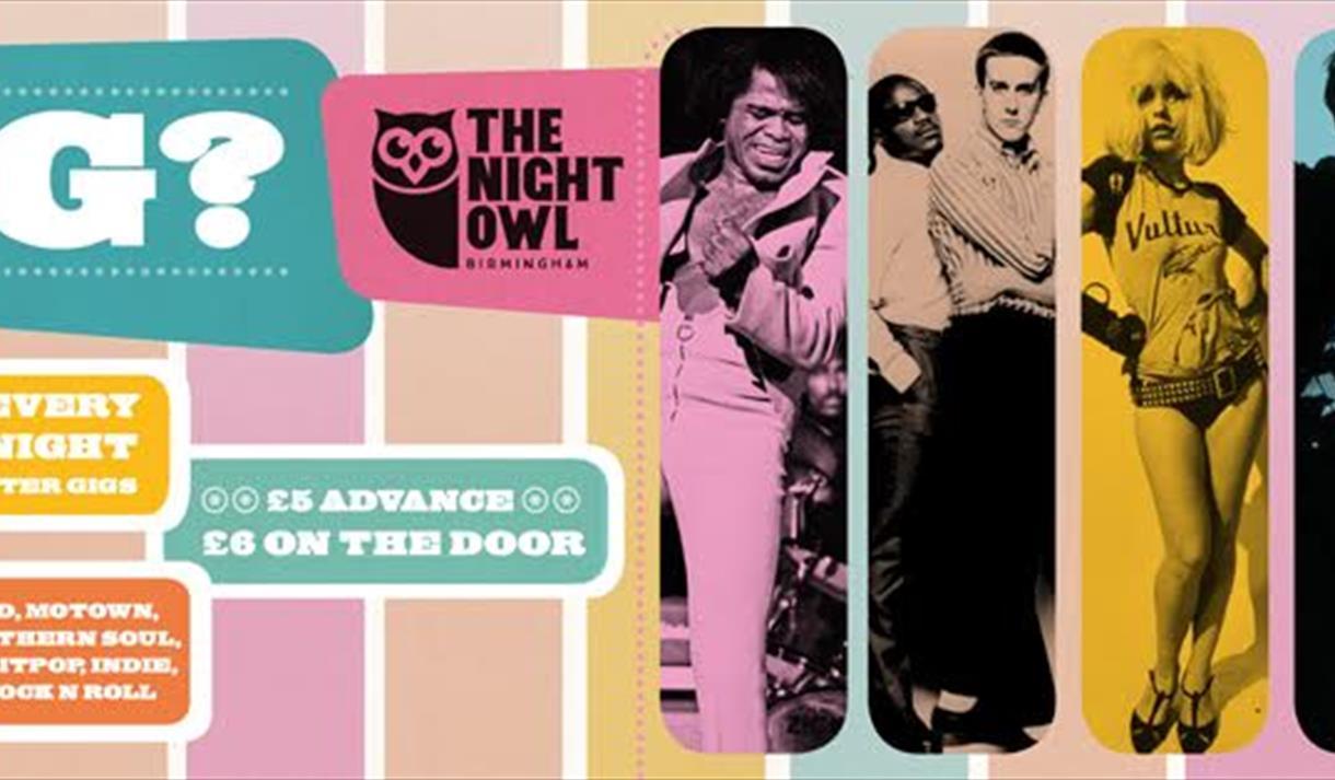 Dig? Club Night at The Night Owl