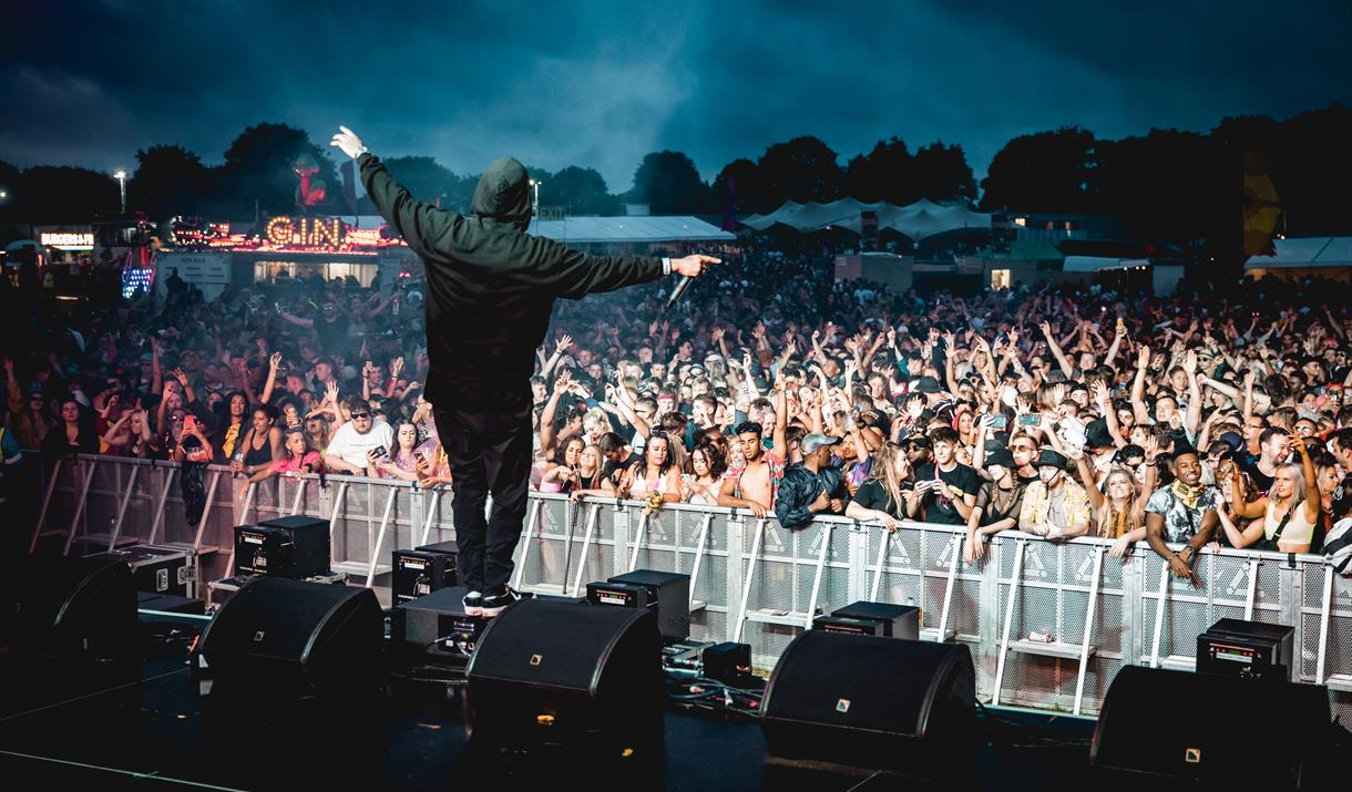 Made Festival Birmingham crowd