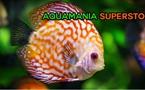Aquamania Superstore