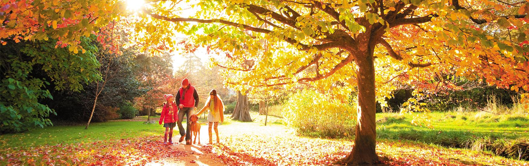 Explore our beautiful Parks and Gardens