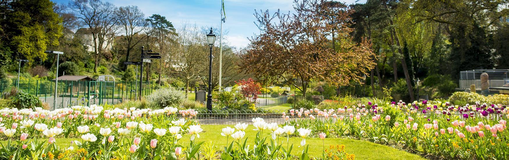 Tranquil walk in Boscombe Chine Gardens