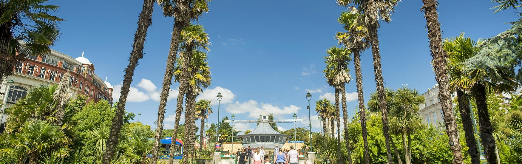 Visitors enjoying a stroll through the palm trees at Bournemouth's lower gardens in Spring time