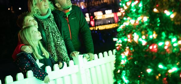 Christmas Tree Wonderland Image for 2020 Release