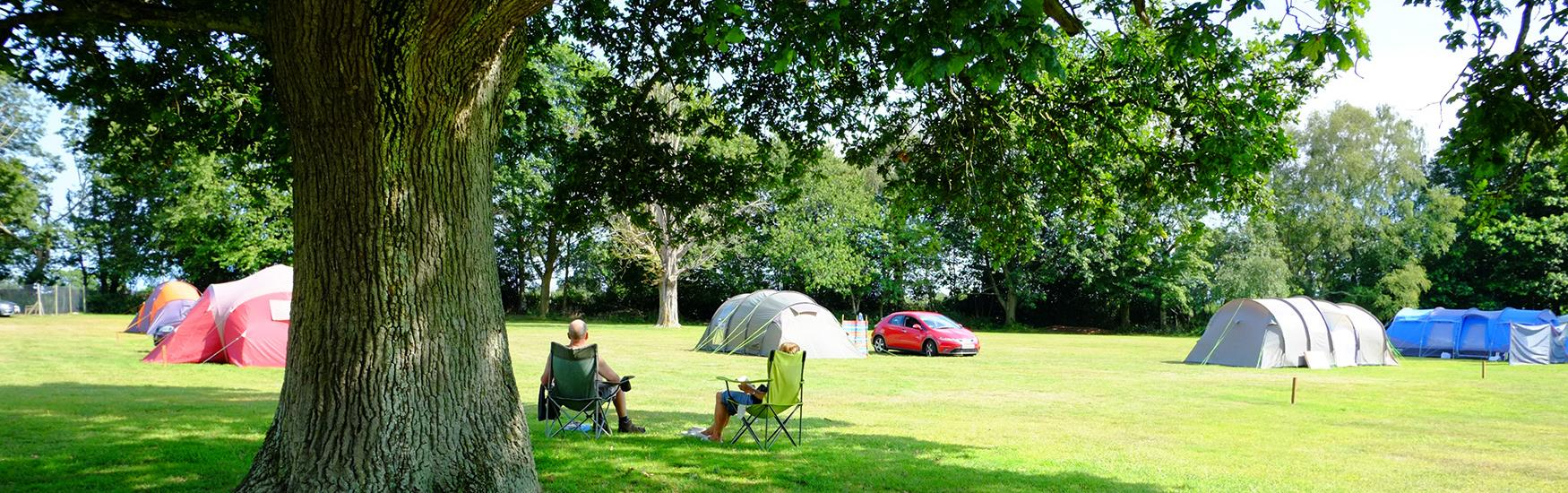 Tents pitched up on lush green grass with campers sat on chairs basking in the sun