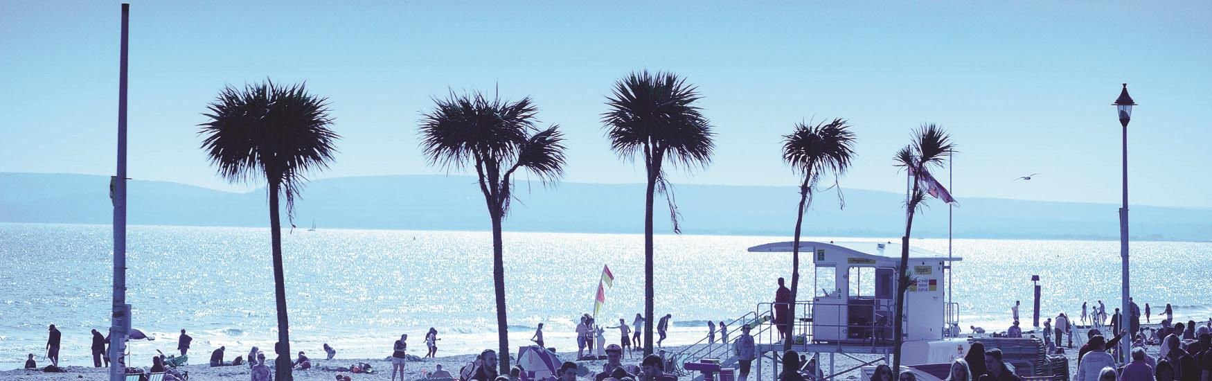 Enjoy seven miles of beautiful coastline