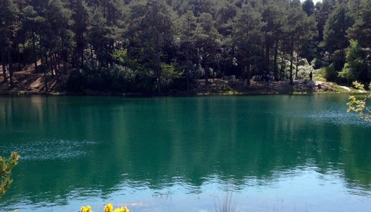 The Blue Pool with a dense amount of trees on the other side