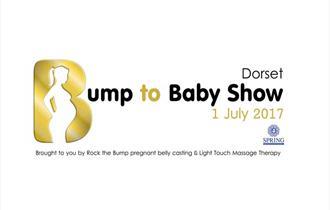 Dorset Bump to Baby Show