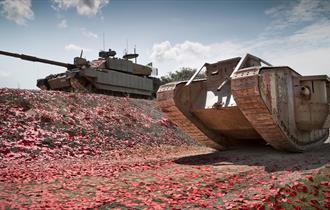 Tank driving through poppies