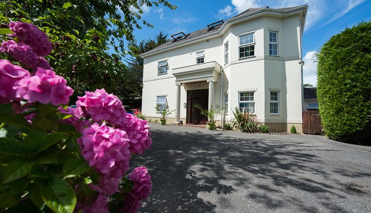 Exterior shot of the Regency Court accommodation and driveway