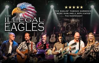 all male band dressed in shirts and jeans playing guitars, 'the illegal eagles' text above them and eagle logo with stars and stripes flag on its head