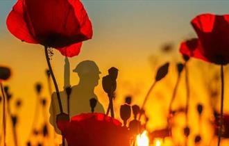 Poppies, with a soldier silhouette in the background.