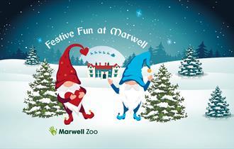 Festive Fun at Marwell Zoo