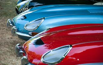 Jaguars lined up at Simply Jaguar