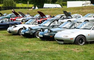 Cars lined up at Beaulieu's Simply Japanese