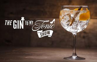 glass of gin on a table with cinnamon stick, lemon slices and ice cubes, 'the gin to my tonic show' title text to the left
