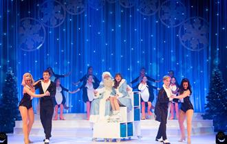 Cast of Christmas show on stage wearing costumes