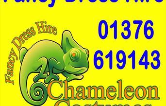 Chameleon Costumes