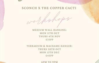 Sconch x The Copper Cacti Macramé and Terrarium Workshops