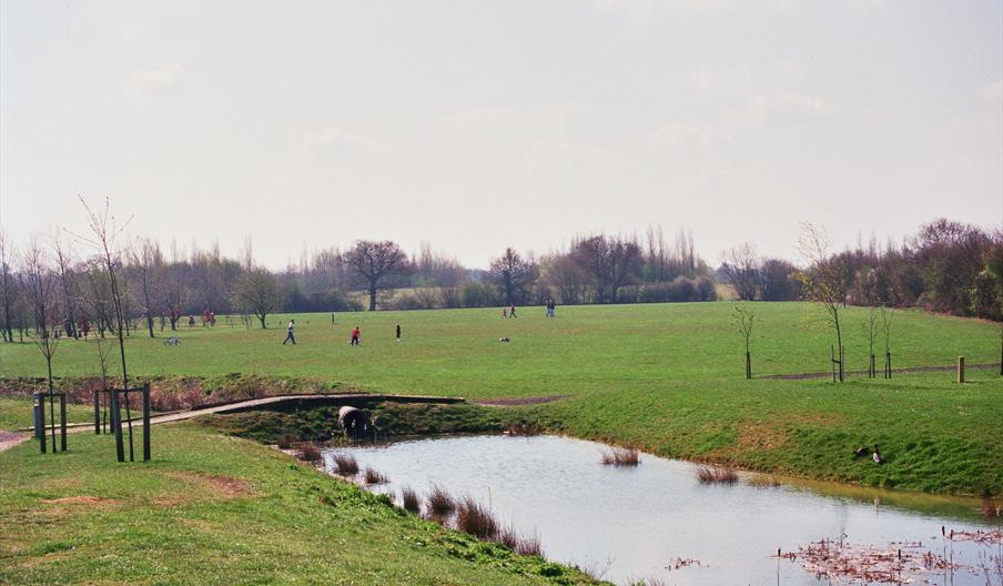 A photo of Great Notley Country Park scenery.